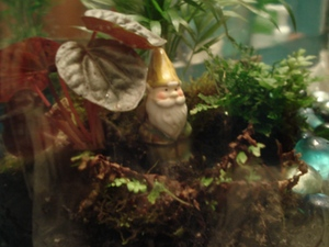 terrarium-and-gnome
