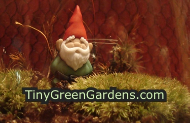 green-button-gnome