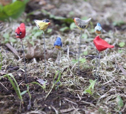 6-tiny-birds